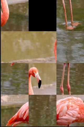 SlidePuzzle - Flamingo image #1