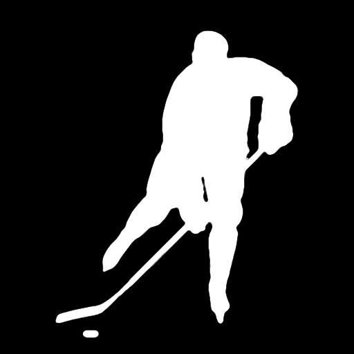 Hockey Fans