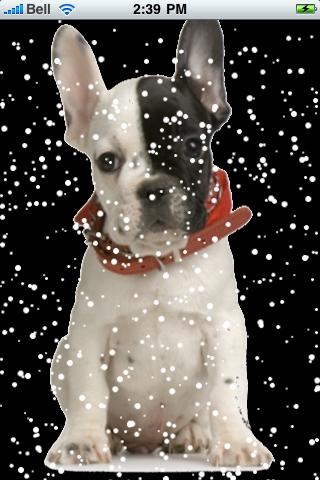 French Bulldog Snow Globe screenshot #2