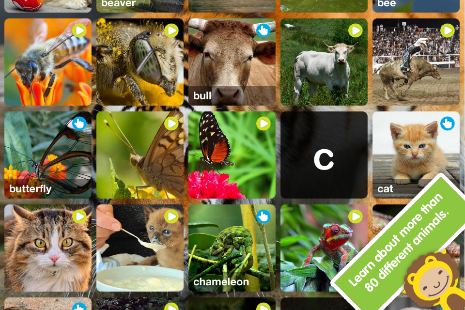 ABC Wildlife! - words about animals with pictures, sounds and videos for kids screenshot 2
