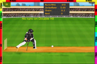 Cricket Lite (MultiPlayer Included) screenshot 5