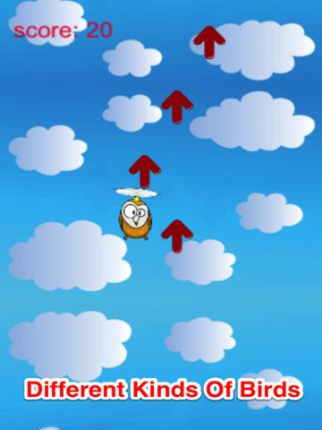 Animal World: Flying Birds screenshot 6