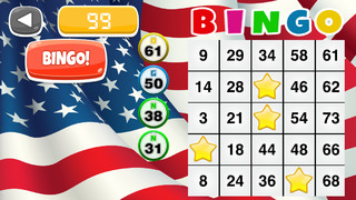 All-American Bingo Game: Fun Party in the USA Edition - FREE screenshot 1