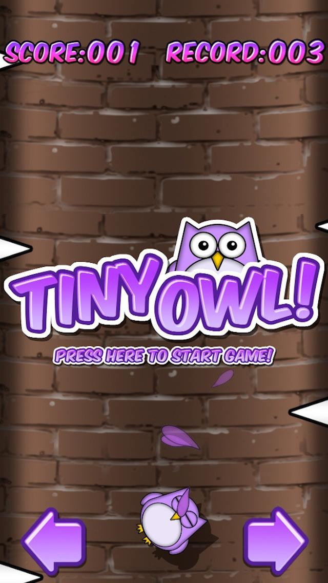 Tiny Owl FREE screenshot 1