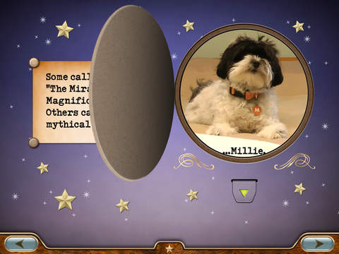 Millie Was Here, Book 1: Meet Millie screenshot 7
