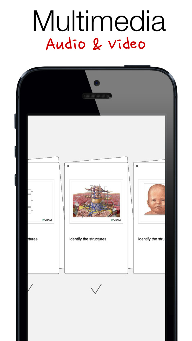 Mental Case — Flashcards for the Serious Student screenshot 2