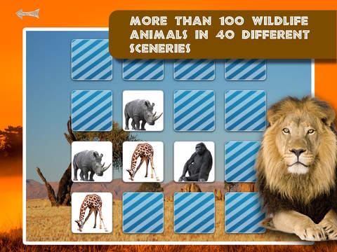 Free Memo Game Wild Animals Photo screenshot 10