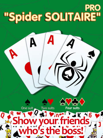 Spider solitaire PRO - classic popular game screenshot 6