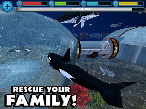 Orca Simulator screenshot 9