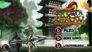 Ninja Arrow Pro : Legend Of The Ancient Dragon The Temple Tour screenshot 1