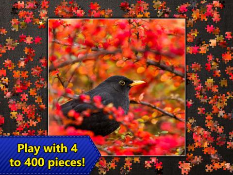 Jigsaw Puzzles Epic screenshot 10