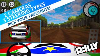 Rally Championship screenshot 5