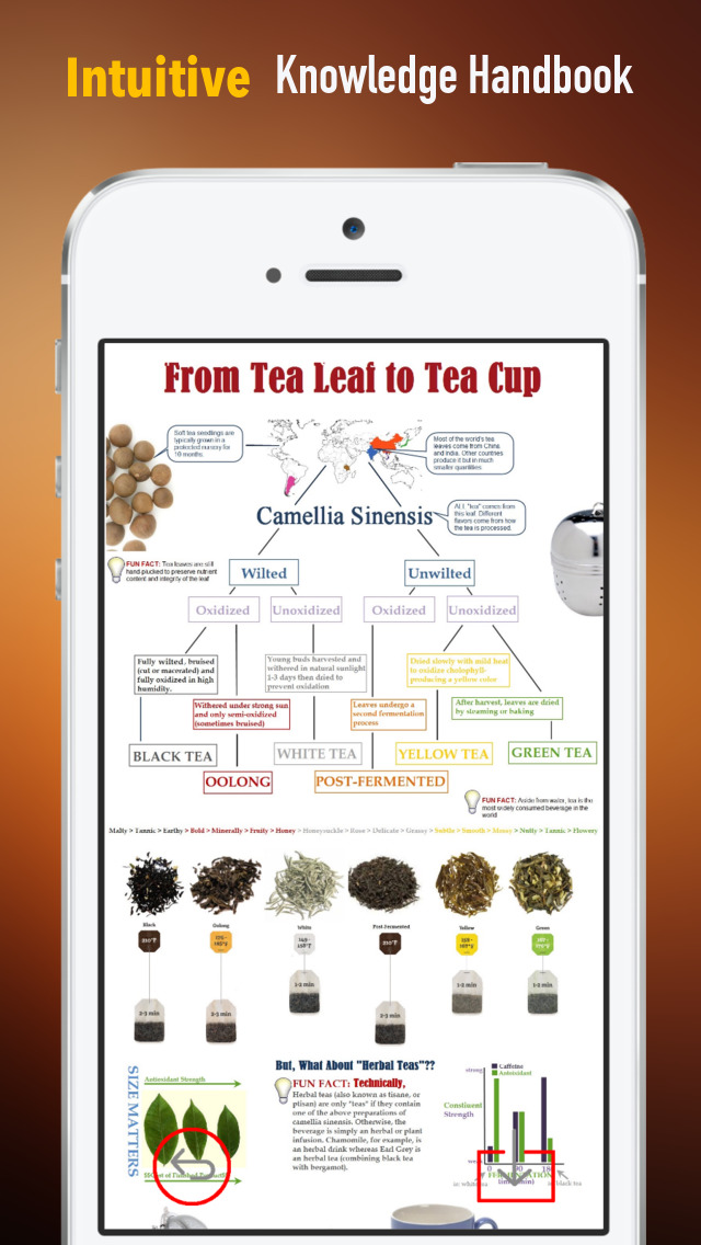 Tea 101: Quick Study Reference with Video Lessons and Brewing Guide screenshot 1