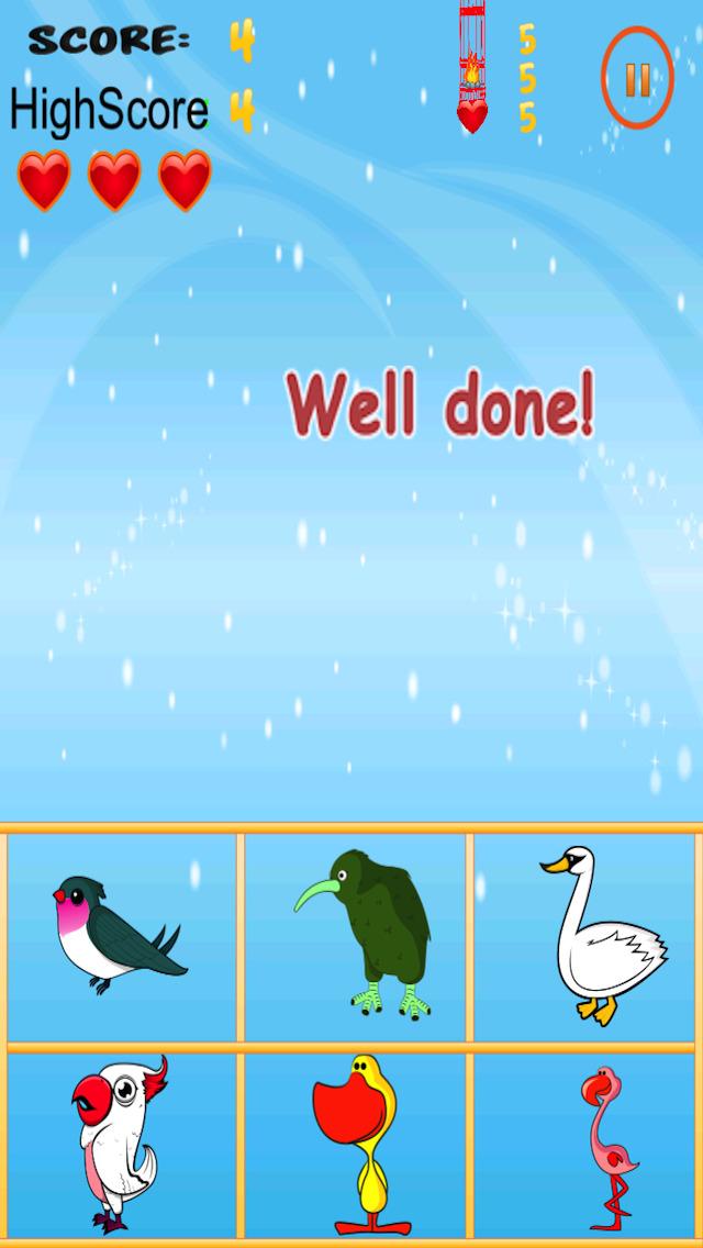 Free Bird Game American Bird Match And Catch screenshot 3