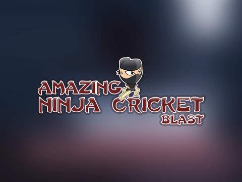 Amazing Ninja Cricket Blast Pro - best bouncing ball batting game screenshot 6