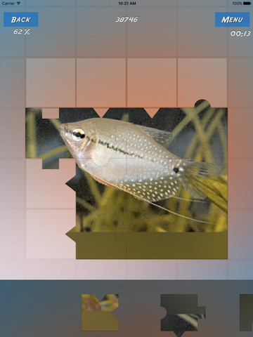 Puzzles Fishes screenshot 9