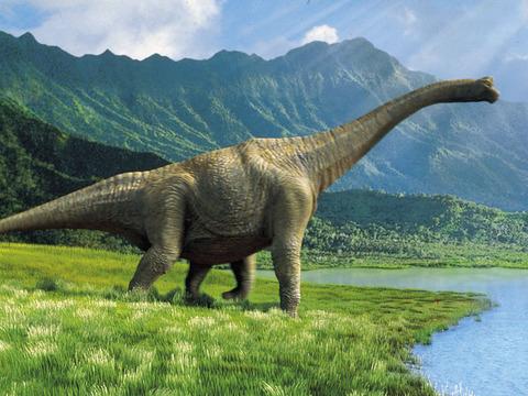 Dinosaur Puzzles for iPad screenshot 4
