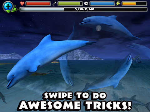 Dolphin Simulator screenshot 8