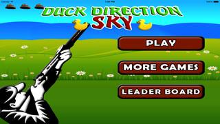 Duck Direction Sky screenshot 5