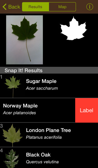 Leafsnap screenshot 3