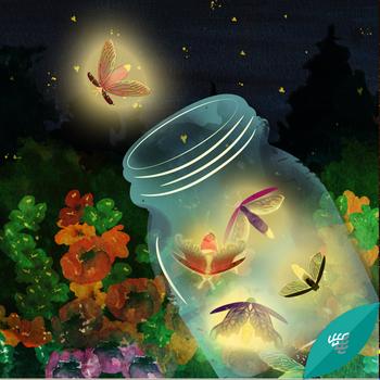 Lucioles - Firefly Catcher