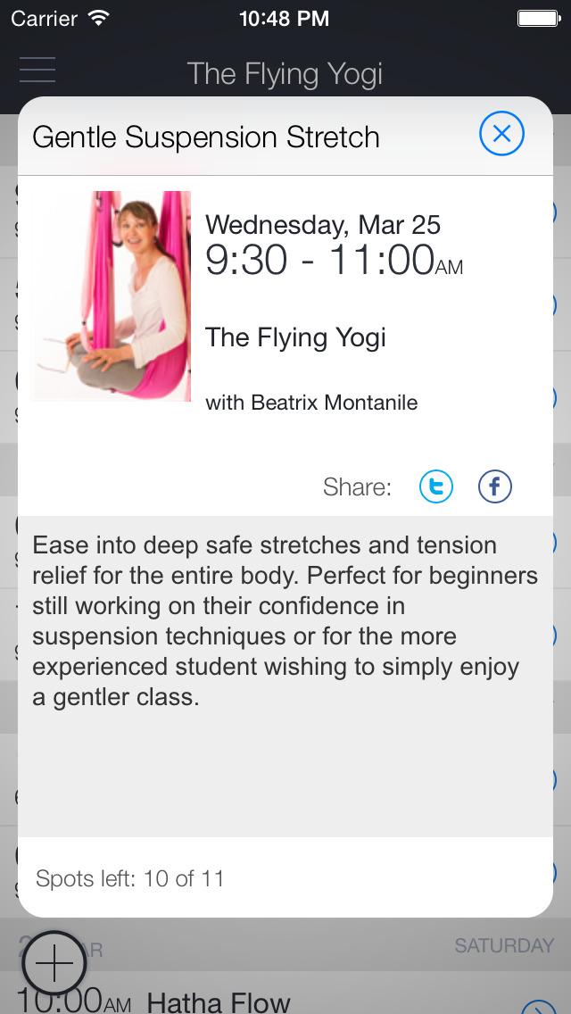 The Flying Yogi screenshot 2