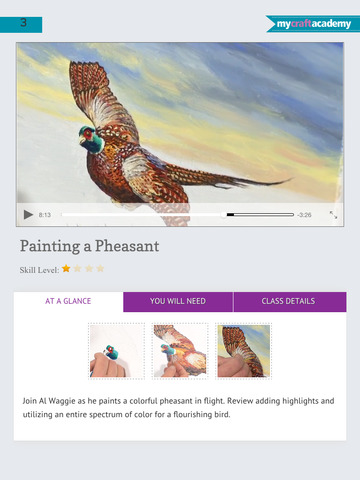Oil Painting Wildlife: Fish & Birds screenshot 9