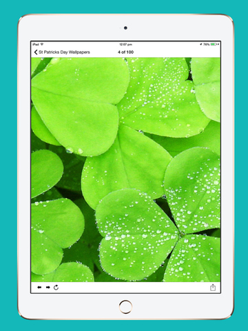 St. Patrick's Day Wallpapers, Themes and Backgrounds screenshot 5