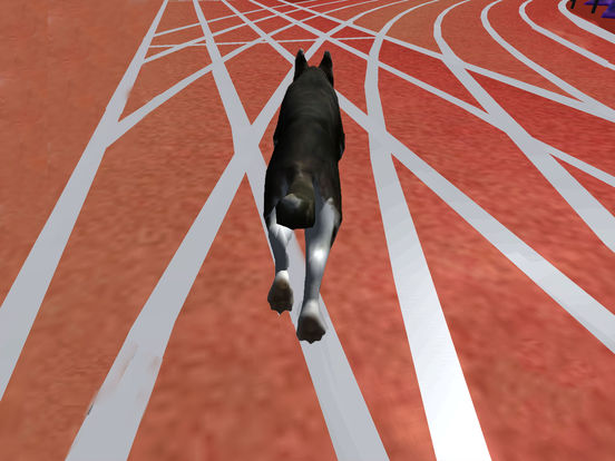 Ultimate Dog Racing : Virtual Stray Simulator 2017 screenshot 6