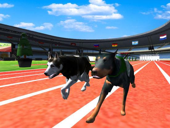 Crazy Racing Dog Simulator screenshot 5