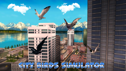 City Birds Simulator screenshot 1