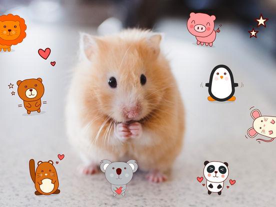 Cute Pets Sticker Pack - Say it the animal way screenshot 3