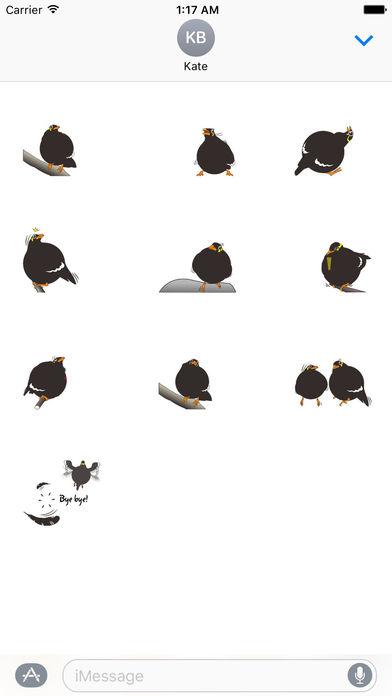 Grackle Bird Sticker screenshot 3