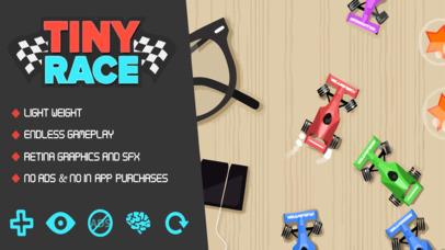 Tiny Race screenshot 1