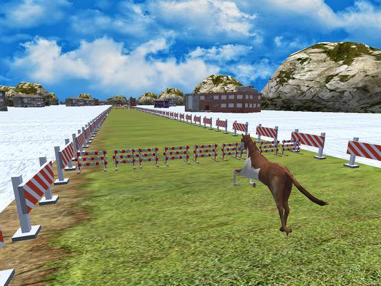 Wild Derby Riding - Horse Race screenshot 10