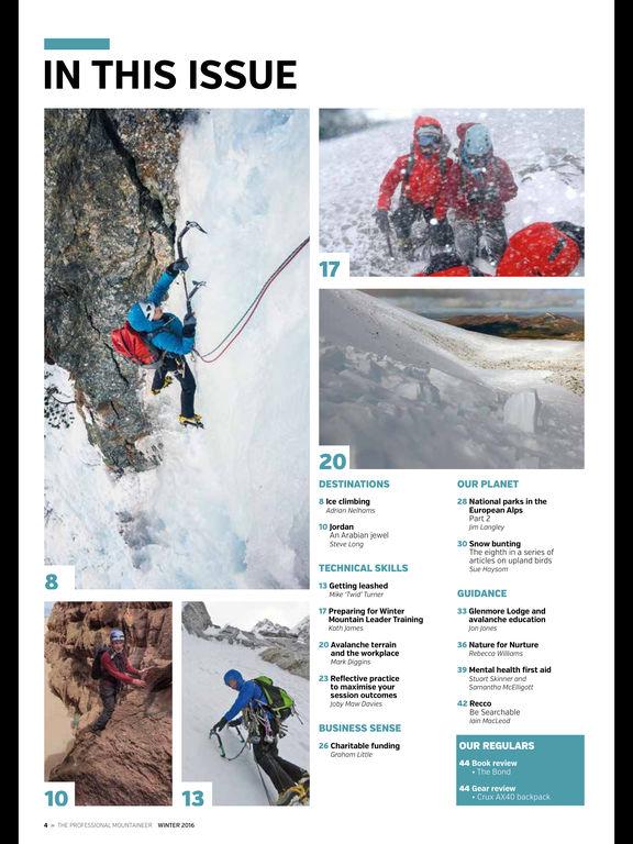 Professional Mountaineer screenshot 7