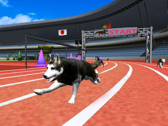 Crazy Racing Dog Simulator screenshot 7