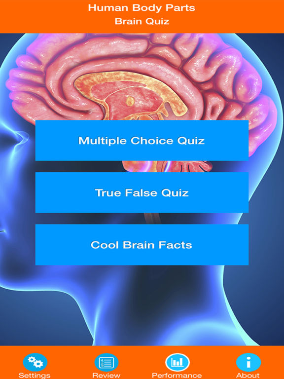 Learn Brain Anatomy screenshot 6