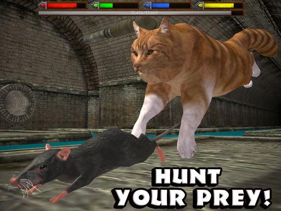 Ultimate Cat Simulator screenshot 7