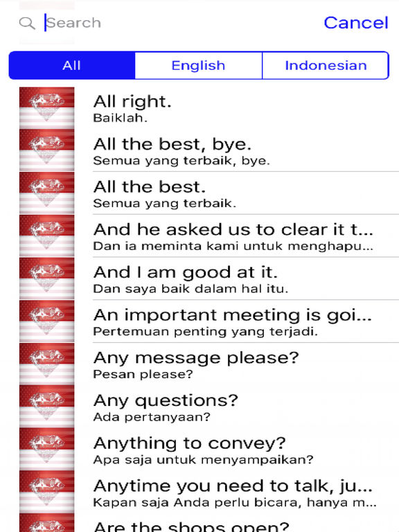 Indonesian Phrases screenshot 4