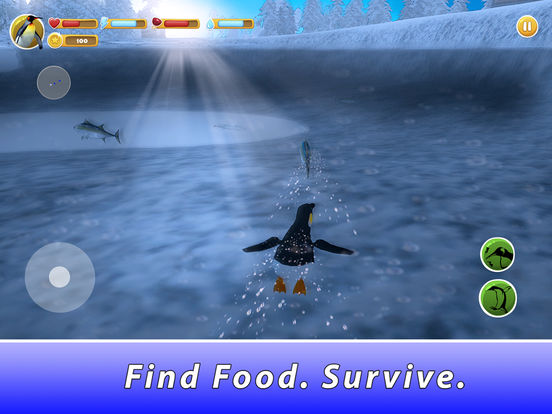 Penguin Family Simulator Full screenshot 7