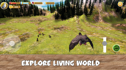 Wild Pigeon Simulator Full screenshot 3