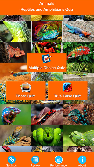Animals : Reptiles Quiz screenshot 1