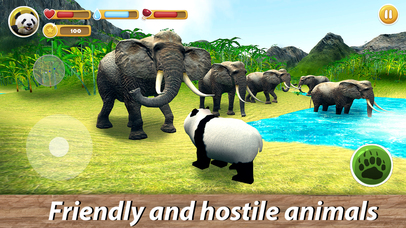 Panda Family Simulator Full screenshot 2