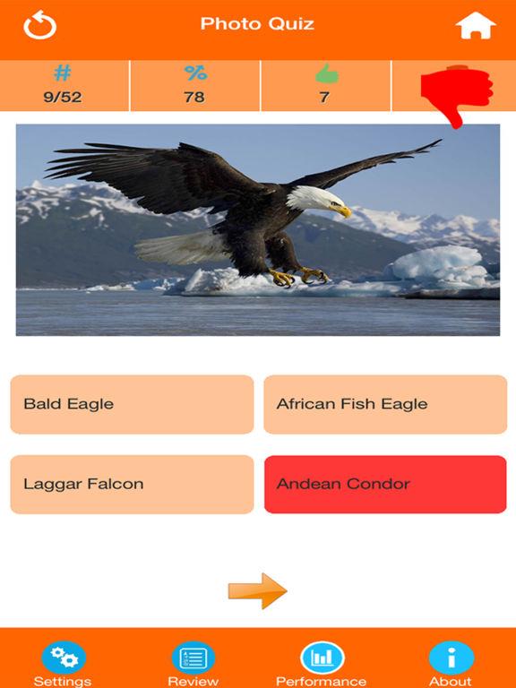 Animals : Wild Birds Quiz screenshot 8
