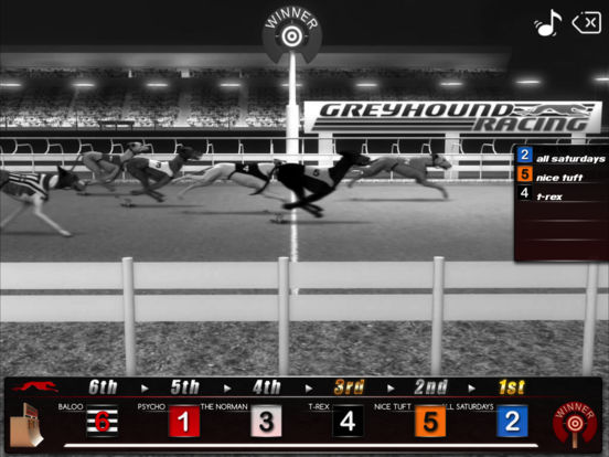 Greyhound Racing ® screenshot 8