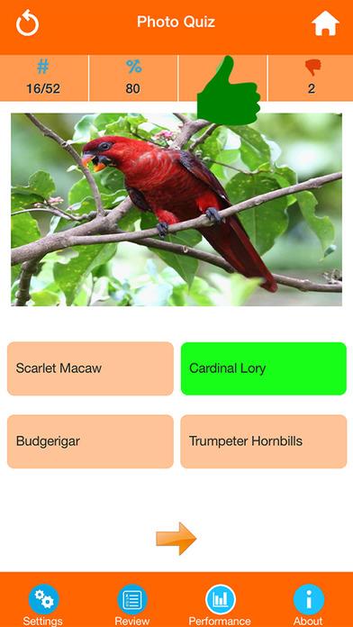 Animals : Wild Birds Quiz screenshot 2
