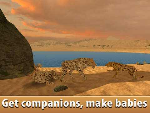 African Cheetah: Wild Animal Simulator 3D screenshot 7