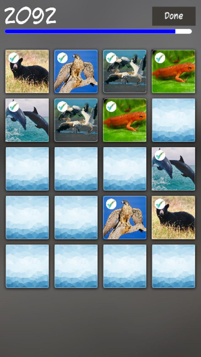 Animals Pair Match screenshot 3