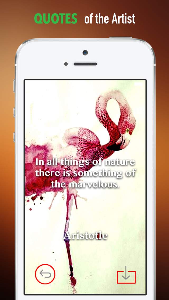 Flamingo Wallpapers HD: Quotes Backgrounds with Art Pictures screenshot 4